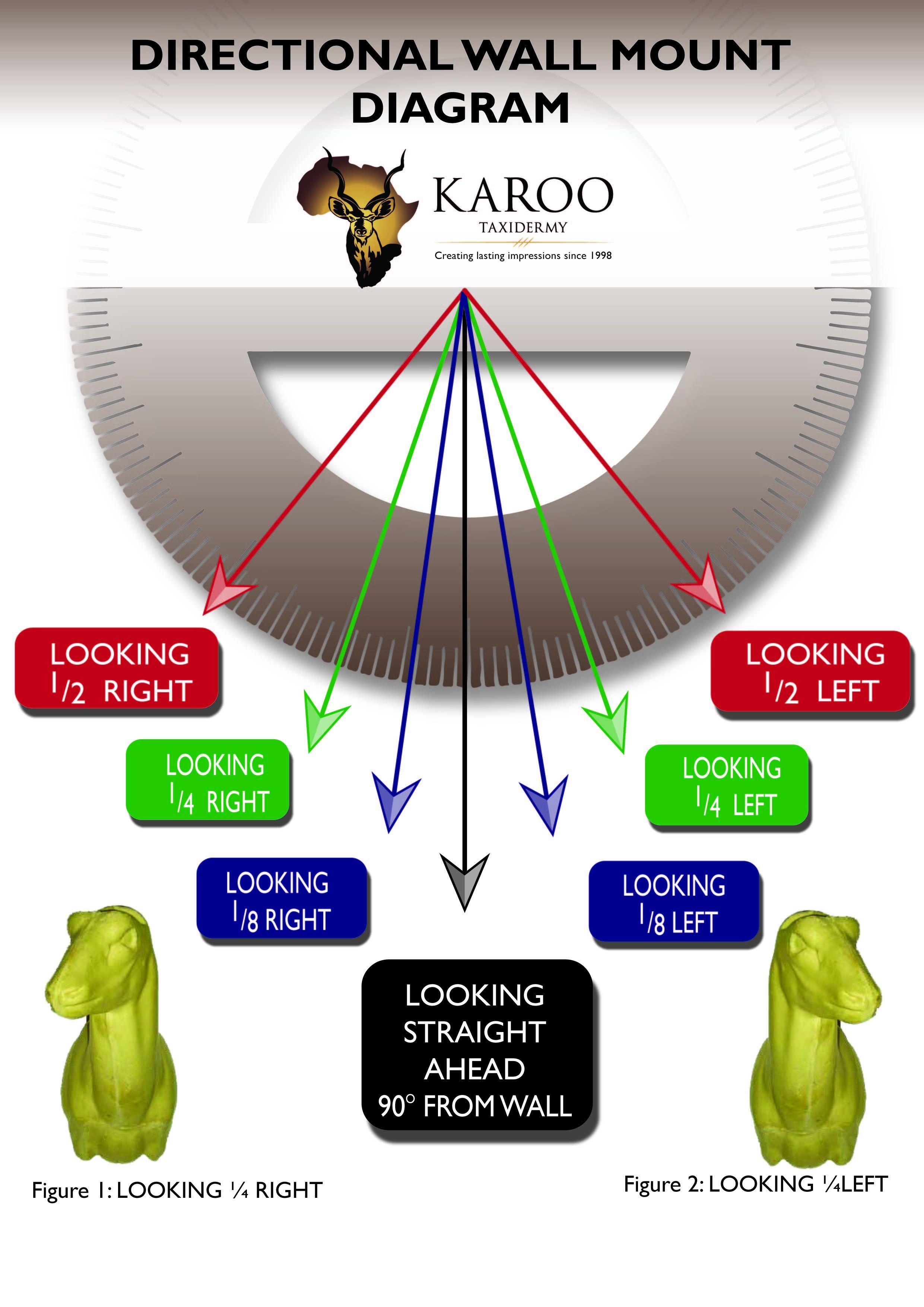 directional_diagram_101.jpg