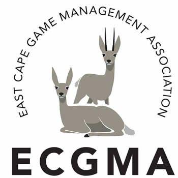 ecgma223987044.jpg
